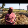 organic farming a eco friendly,food production,intensive labour opportunity-FPV/SEVAI Project